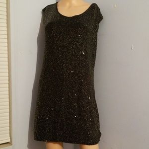 🎃SEQUINED EXPRESS DRESS LARGE